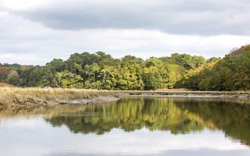Une jolie palette de couleurs sur les rives du Scorff © Fanc Galivel