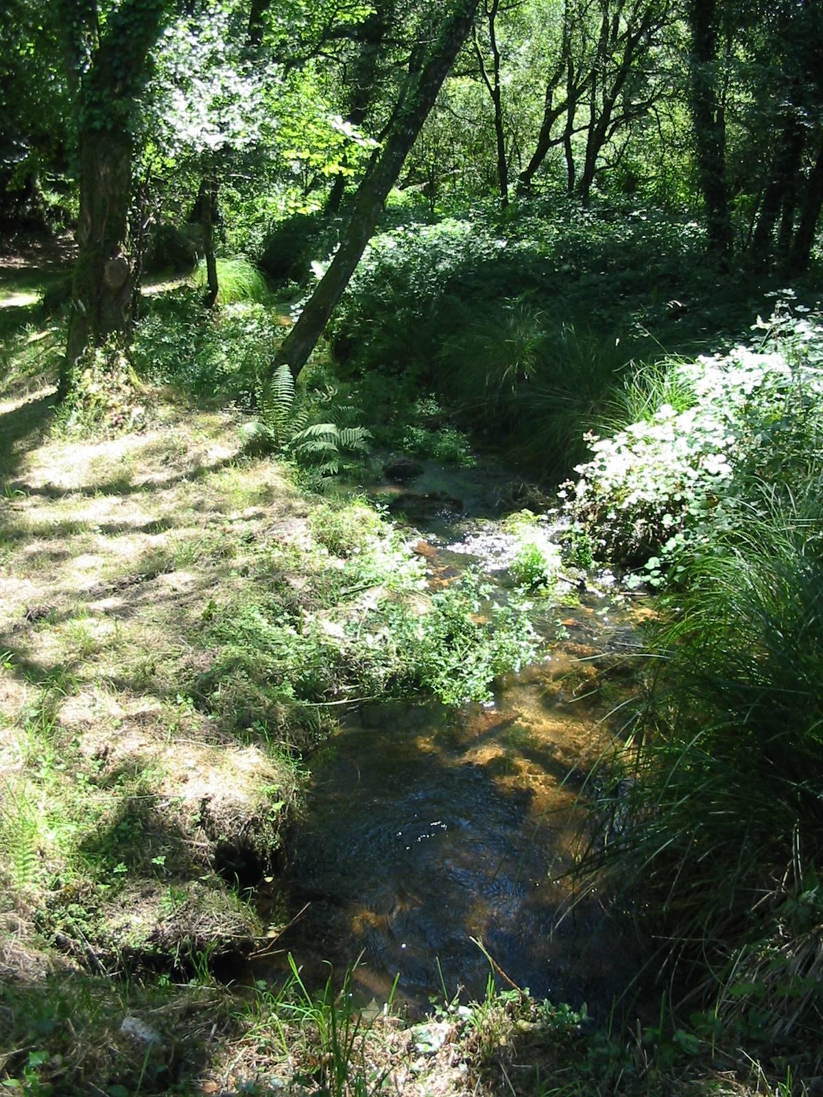 Un vrai ruisseau musée à Quelven © Michel Langle