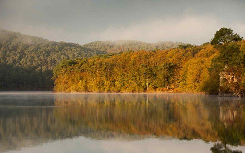 Lac de Guerlédan en automne