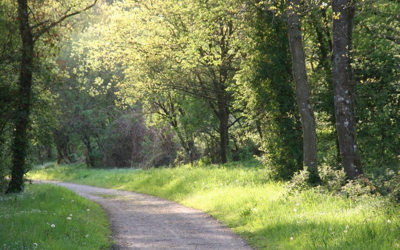 voie verte à Augan © Office de Tourisme de l'Oust à Brocéliande