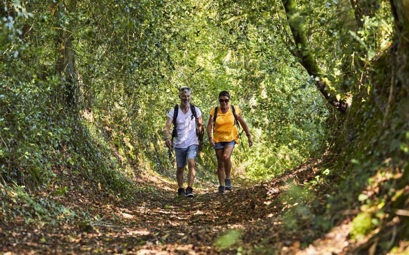 Les chemins creux sont nombreux dans les forêts bretonnes © Alexandre LAMOUREUX