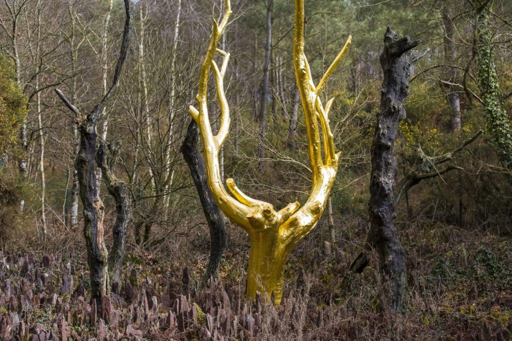 Arbre d'or © Y. Derennes