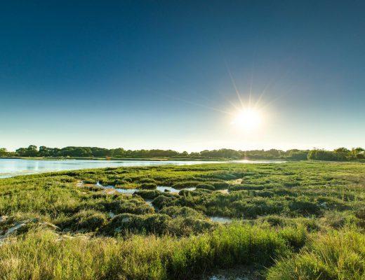 Les marais de Séné dans le Golfe du Morbihan © Simon Bourcier